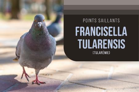 Francisella tularensis (tularémie)